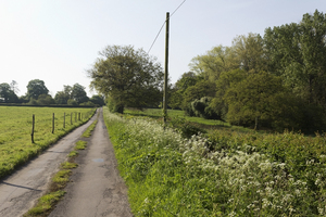 Farm lane: A farm lane in West Sussex, England.