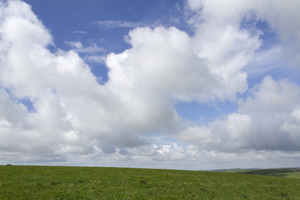 Grass and sky: Landscape of the South Downs, Sussex, England.