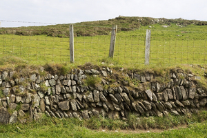 Old stone wall: An old stone wall and sheep fence in Pembrokeshire, Wales.