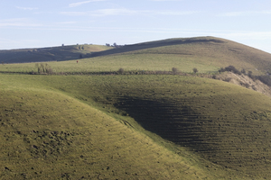 Hill walker: A walker and dogs (look closely) on Knap Hill, Wiltshire, England, on a fine winter morning.