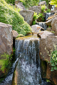 Stream and waterfalls: A stream with waterfalls in a rockery garden in England in spring.