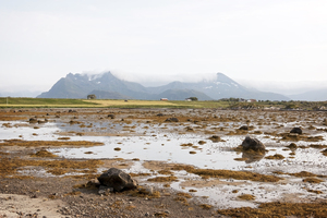 Low tide: sand/mud flats at low tide in the Lofoten Islands, Norway.