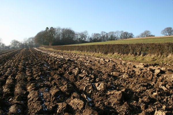 Ploughed field in winter: A ploughed field in West Sussex, England, on a frosty winter day.