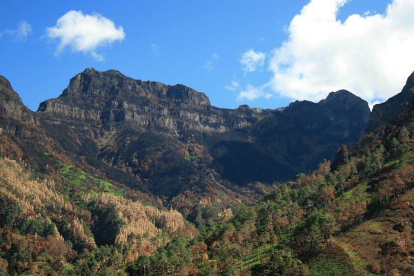 Mountains in Madeira: Volcanic mountains covered in tropical vegetation in Madeira.