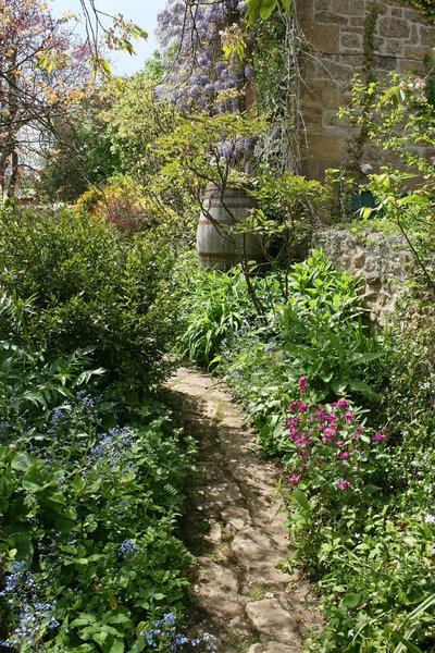 Cottage garden: Part of an English cottage garden in Somerset, England, in spring.