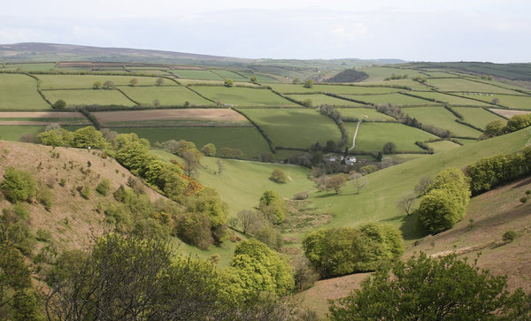 Exmoor valley: A cultivated valley in Exmoor, southwest England, in spring.