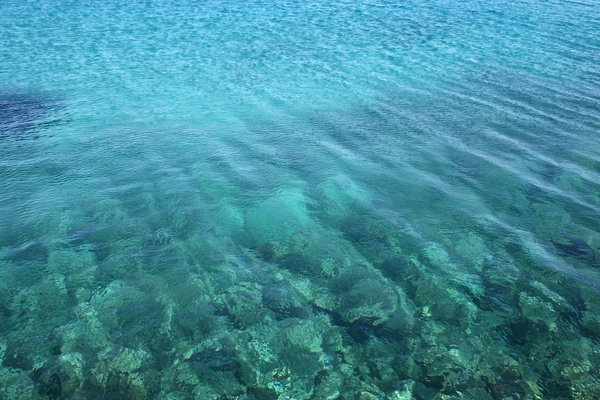 Clear sea, rocky floor: Clear blue seawater over a rocky floor in the Maddalena Islands, Sardinia.