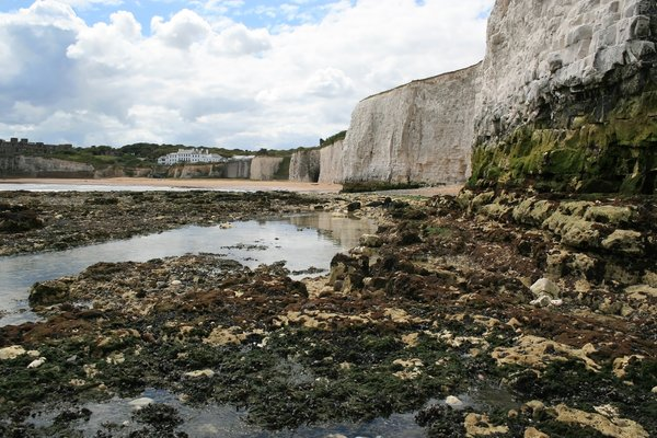 Cliffs and rockpools: Rockpools at the base of chalk cliffs at low tide in Kent, England.