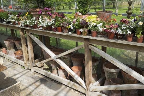 Potting table: A potting table in a greenhouse in England.