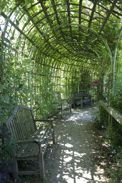 Green shade: A long curved trellis tunnel in a garden in England.