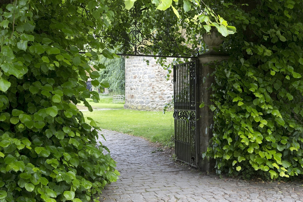 Courtyard gate: Gateway to an old courtyard in Wiltshire, England.
