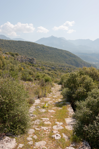 Ancient track: A kaldaremi (ancient cobbled mule-track) on a hillside near Kardamili, southern Greece.