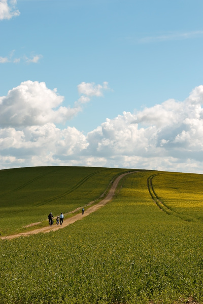 Family cycling: A family cycling on the South Downs, England, in spring.