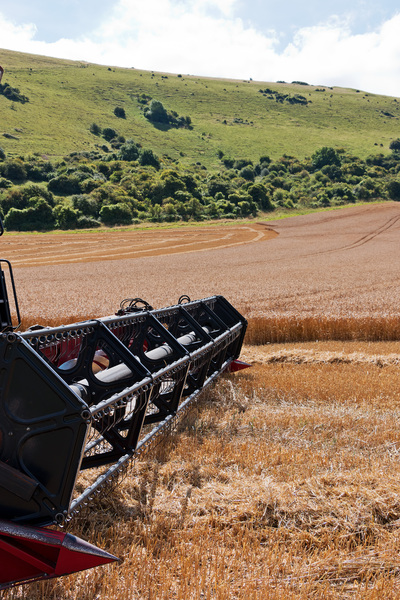 Wheat harvester: A combine harvester paused in the job of harvesting a field of wheat at the foot of the South Downs, Sussex, England.