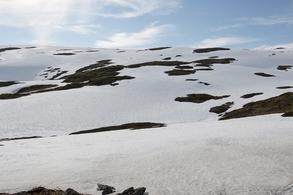 Patchwork of snow: Melting snow on mountains on a high plateau in Norway in July.