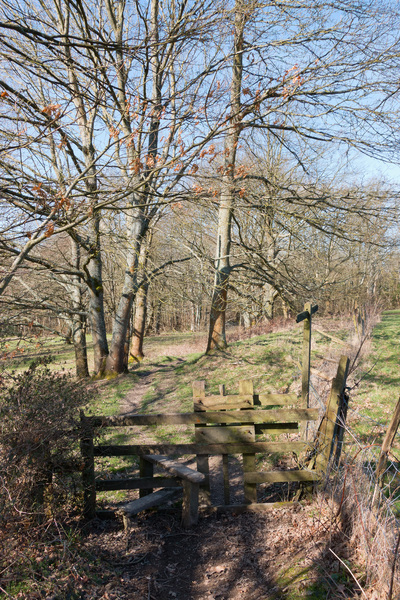 Rural footpath and stile: A rural footpath and stile in Sussex, England, in early spring.