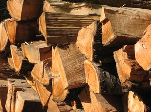 piled wood: none