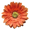 Orange flower: A artificial flower.