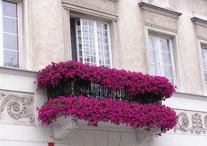 Balcony: A beautiful balcony with the flowers.Please comment this shot or mail me if you found it useful. Just to let me know!I would be extremely happy to see the final work even if you think it is nothing special! For me it is (and for my portfolio).
