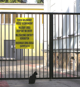 No entry: Cats are not allowed here!Please comment this shot or mail me if you found it useful. Just to let me know!I would be extremely happy to see the final work even if you think it is nothing special! For me it is (and for my portfolio)!