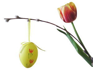 Easter composition: An egg, a twig and a tulip.