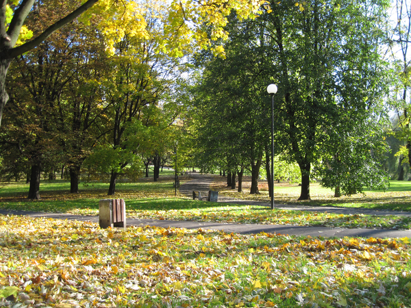 Autumn in the park: An autumn in the park in Warsaw.