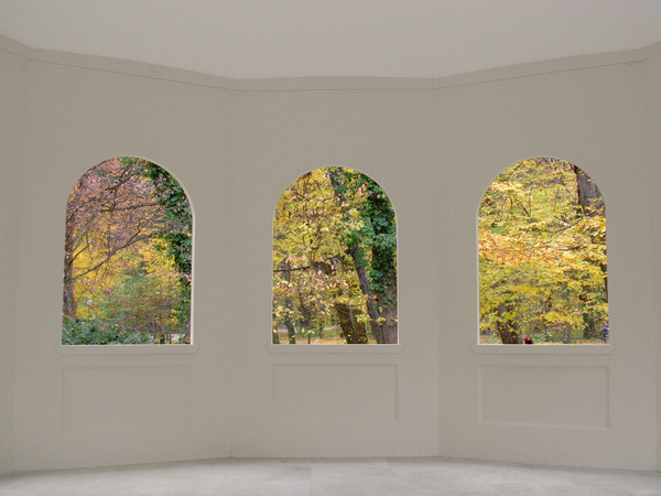 fall: thre windows looking at woods