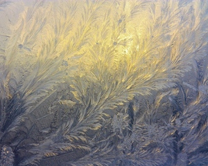 Frosty patterns 1: These are frosty patterns on the window of my room. I prepared these files to be Windows desctop wallpapers, so fullscreen view is strongly recommended. Any comments are welcome, as usual.