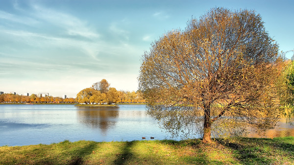 Autumn in Moscow: This is Tsaritsyno park in Moscow, Russia. The photo designed to be Windows desktop wallpaper.