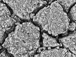 Background element: Cracked earth http://dezignia.com