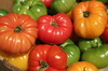 Heirloom Tomatoes: Tomatoes in basket