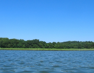 Sky, trees, and river: Nissequogue River, Long Island, NY