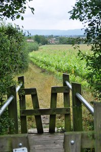 V Stile: V shaped stile on a wet weekend walk