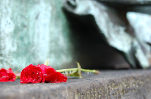 Death in Hannover: A red rose rest at he feet of a Luther statue. Staring at the empty sky durig a rainy afternoon.