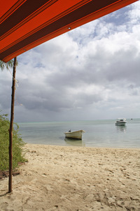 tropical beach: beach on mauritius