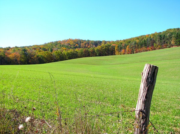 Rolling Hills: From Central Pennsylvania, rolling hills in autumn.