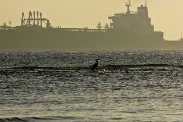 Parked: Heron searches for food as Ship loads oil in background. Silhouettes.