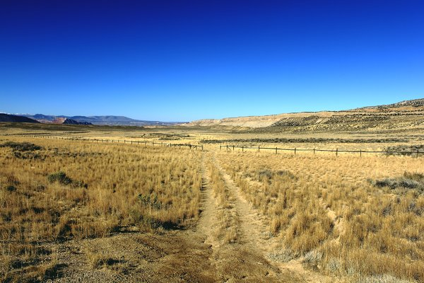 Plains Path: Path to the wilds of Wyoming.