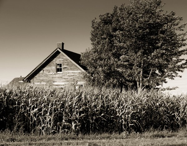 Old farm house B&W: Shot taken in St. Benoit, Quebec, Canada