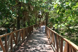 Wooden Walkway: This is wooden walway to the beach from Hotel in Cuba - Varadero