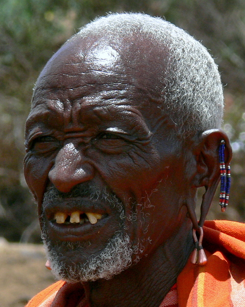 Masai 2 - Tribal Chief: Various pictures of the Masai Tribe in Kenya. Hardened warrior people who lives from the land and their cattle in east africa.
