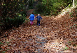 You Lead: Two kids walking an autumn path. It doesn't matter where they are going as long as they ditch mom and dad.