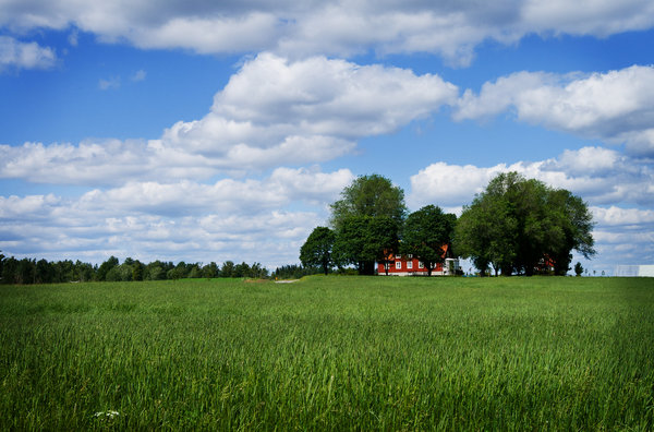 Farm in Sweden_2: A farm in the south of Sweden
