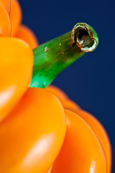 Orange Pepper Close-up: Close-up crop of an orange bell pepper.