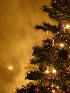 Graham's kerstboom 9:
