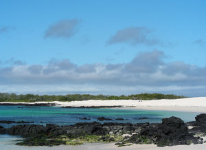 beautiful galapagos3: none
