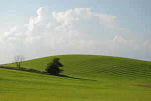 Green Hill: Green hill and clouds in the sky, countryside outside of city of Malmö, Sweden.