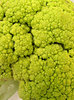 broccoflower: green cauliflower