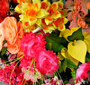 false flower: brightly coloured artificial flower