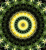 lilly pad gold: abstract backgrounds, textures, patterns, geometric patterns, kaleidoscopic patterns, circles, shapes and  perspectives from altering and manipulating image